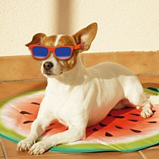 Starlyf Pet Cooling Matte