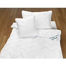 Bettinhalt Set Pfulmen & Duvet