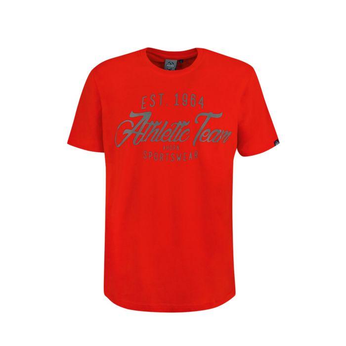 Image of Herren T-Shirt mit Print, grosse Grössen
