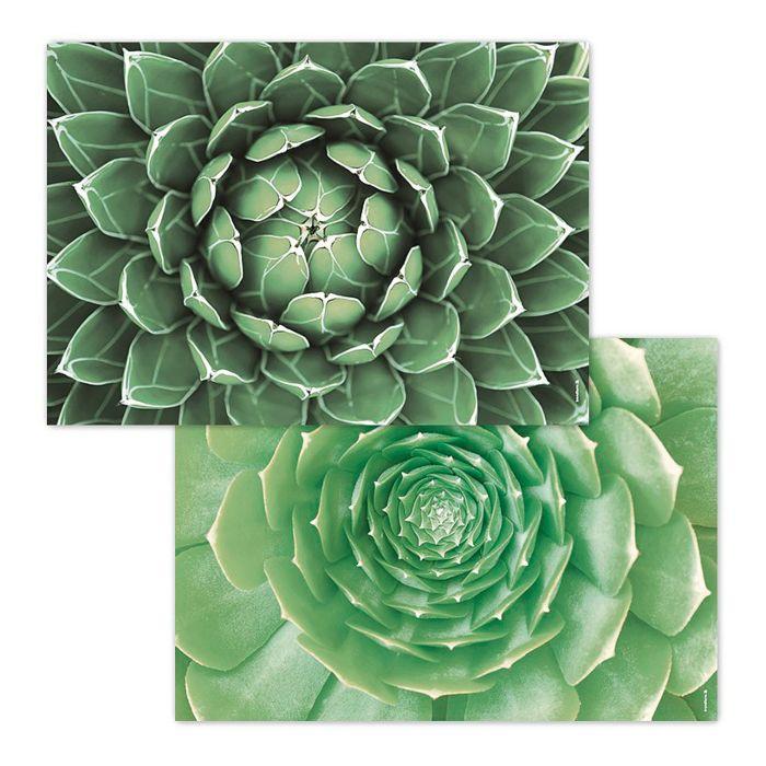 Papiertischset Succulenten-Motiv
