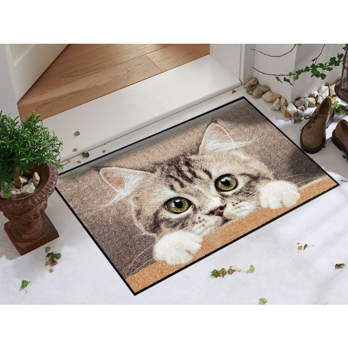 Türmatte Katze
