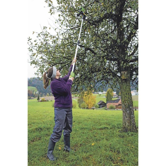 Teleskopgriff zu Akku-Baumschere