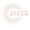 5880069 Conditioning Steam